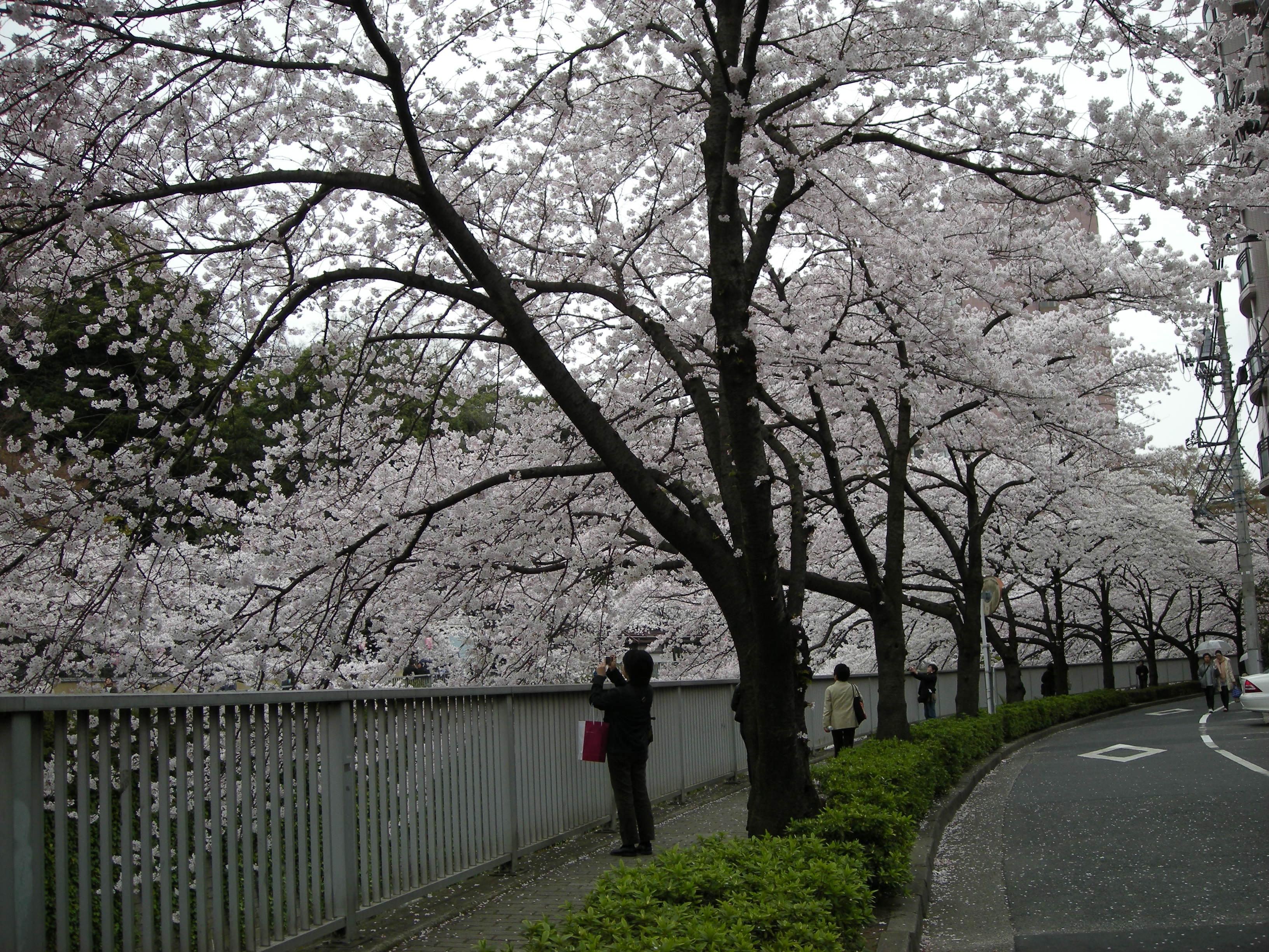 yueueuuo-028.jpg